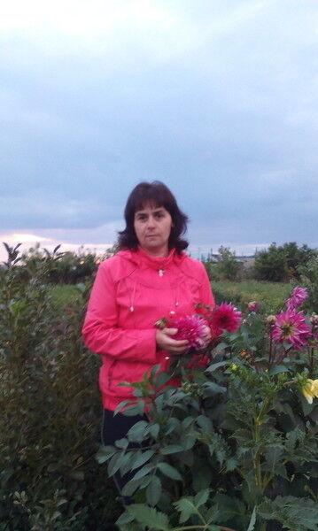 Фото девушки elena, Новосибирск, Россия, 43